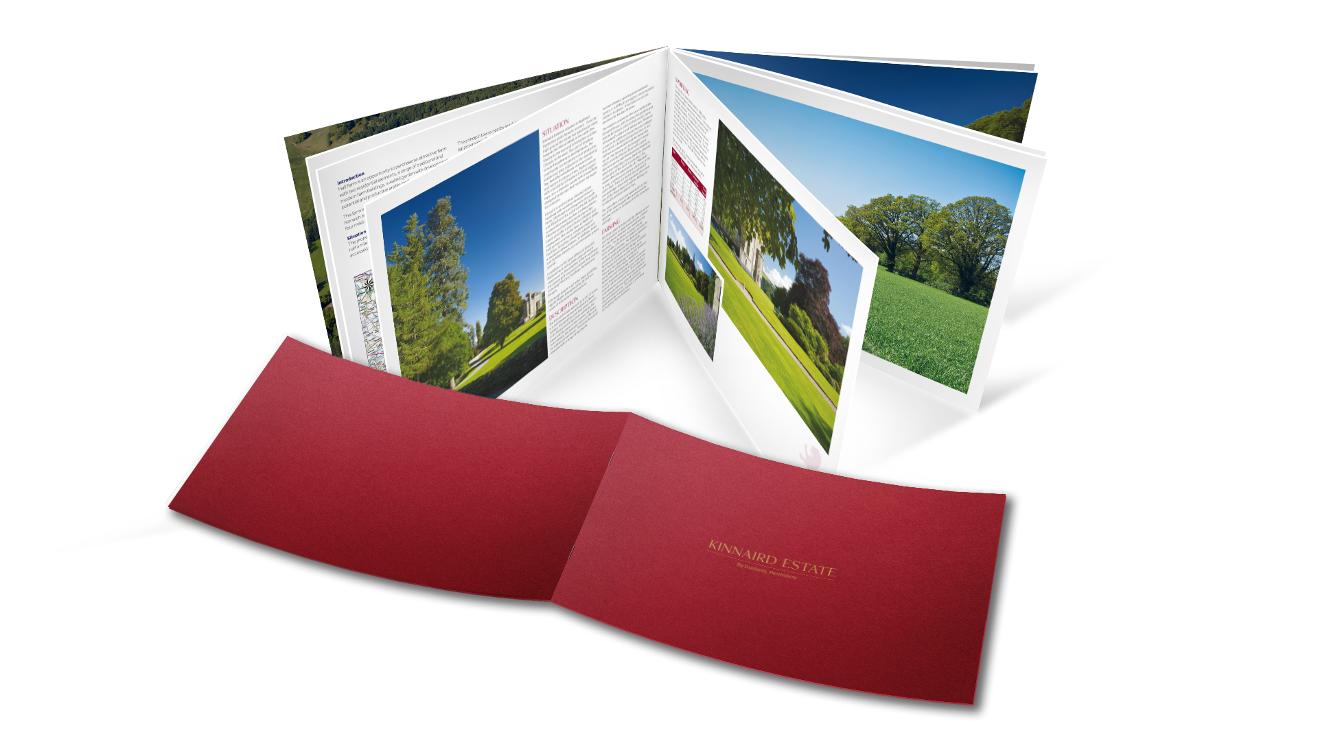 Word Perfect Print Brochure Design and Print